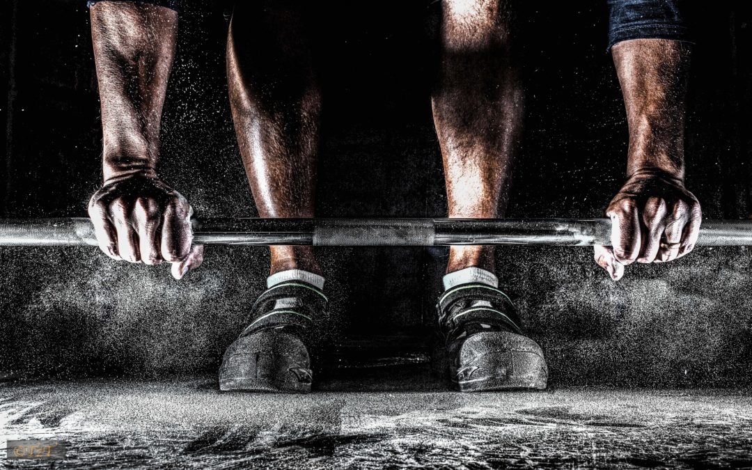 Training Frequency: What is the best workout split?