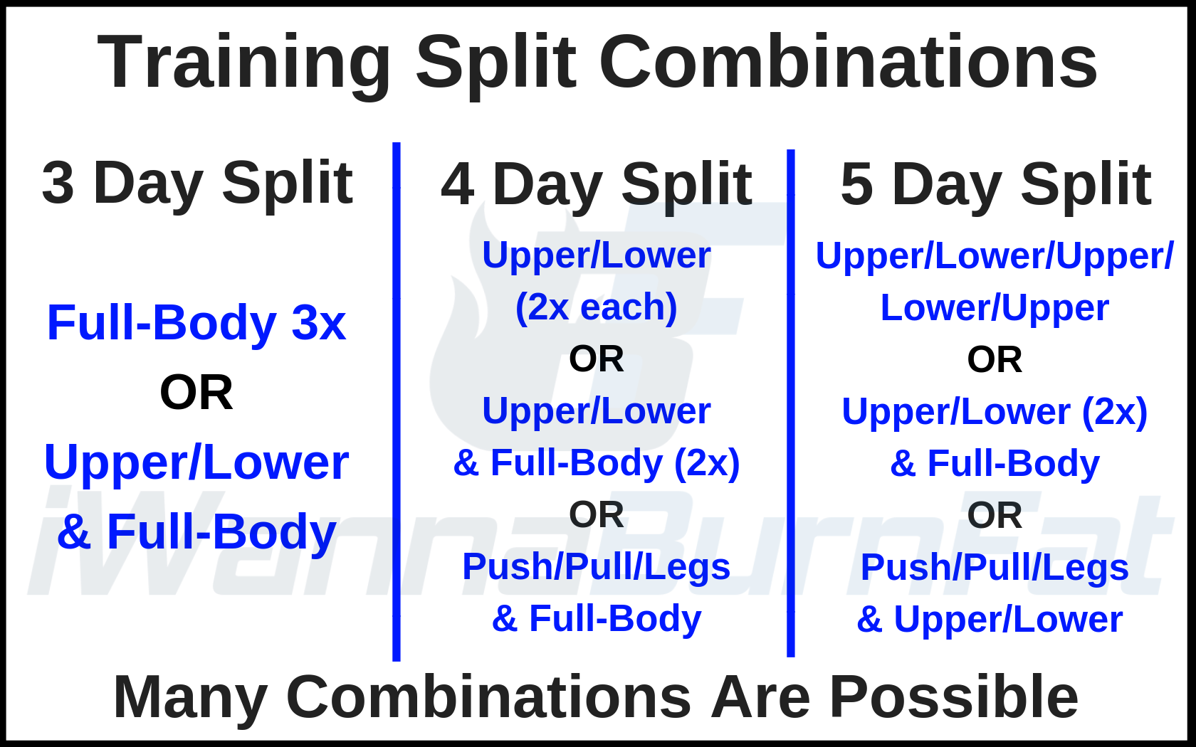 Training Frequency: What is the best workout split? - I